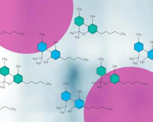Scientific CBD and THC molecules